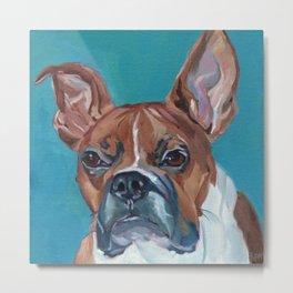 Walker the Boxer Dog Portrait Metal Print