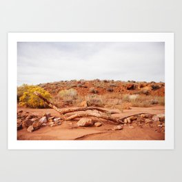 In the old creek bed Art Print