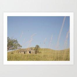 Abandoned South Dakota 7950 Art Print