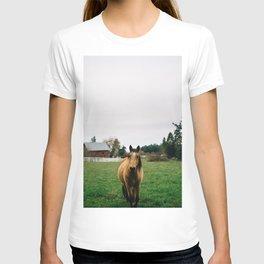 Horse // Oregon T-shirt