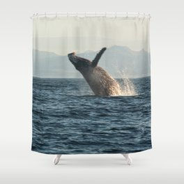 Breaching Whale Photography Print Shower Curtain