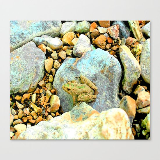 Summer Time Frog Canvas Print