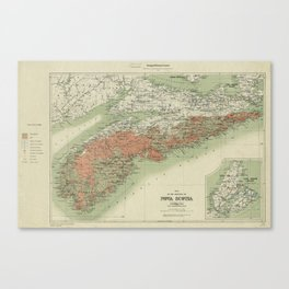 Vintage Geological Map of Nova Scotia (1906) Canvas Print