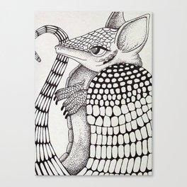 Ossabaw Natives : Armadillo Canvas Print