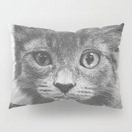 What? Pillow Sham