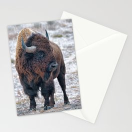 In The Presence Of Bison #society6 #decor #bison by Lena Owens @OLena Art Stationery Cards