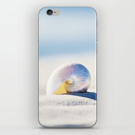Pearl Nautilus Seashell Photography, Shell on Beach, Blue Coastal Photograph iPhone Skin