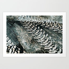 Muddy Tracks Art Print