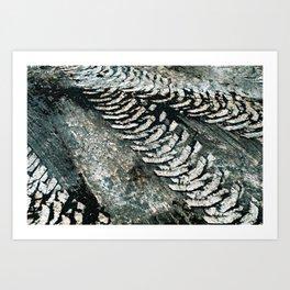 Muddy Tracks Art Print