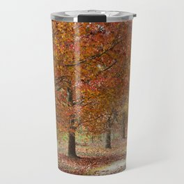Sun Lit Tree Lined Avenue in Autumn Travel Mug