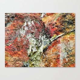 Volcanic One Canvas Print