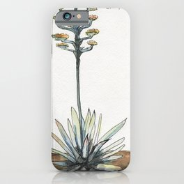 Century Plant (Agave) iPhone Case