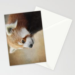 Red Panda Watching - Wildlife Stationery Cards