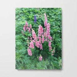 pink ladies Metal Print