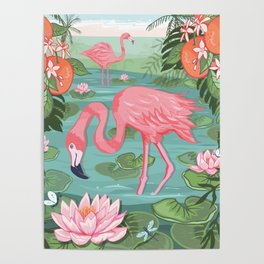 Flamingo and Waterlily Poster