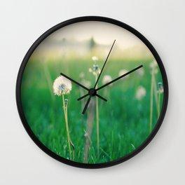 May Dandelions Wall Clock