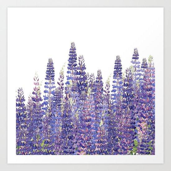 Just Lupine Art Print