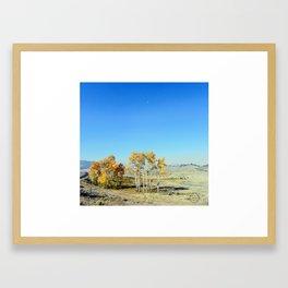 Fall in Lamar Valley, Yellowstone Framed Art Print