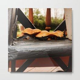 Mushrooms Grow Through Old Paint Metal Print