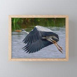 Heron Framed Mini Art Print