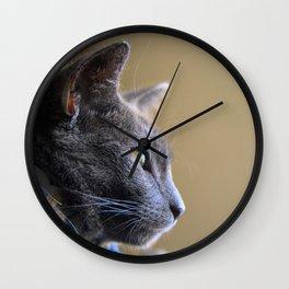 Russian Blue Kitten Portrait 4 Wall Clock