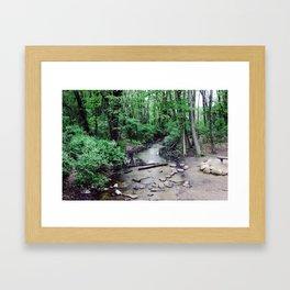 Asylum Lake  Framed Art Print