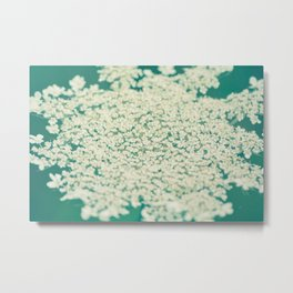 Queen Anne's Lace // Turquoise Metal Print