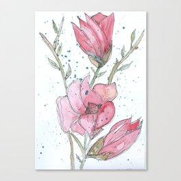 Magnolia #3 Canvas Print