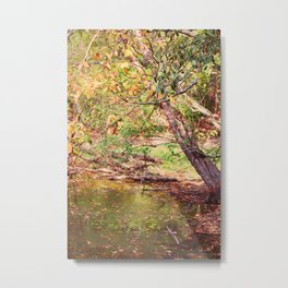 Autumn At Hickory Ridge Pond Metal Print