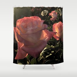 Sunset Roses Shower Curtain