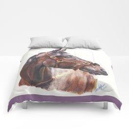 zenyatta... Comforters