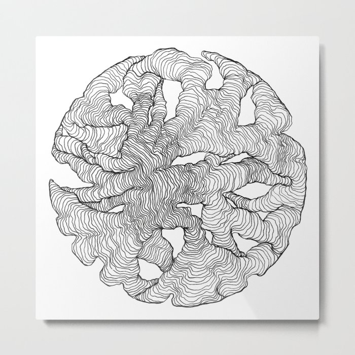 Organic Lines Metal Print