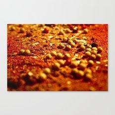Spice Land: 2 Canvas Print