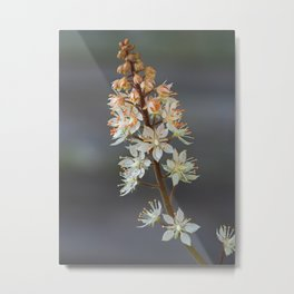Foam Flower Metal Print