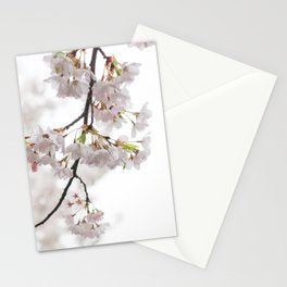 Fall down with Sakura Stationery Cards