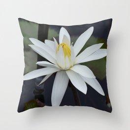 Water Lily White Throw Pillow