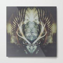 Spirit Questions  Metal Print