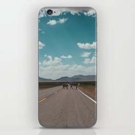 cows on the open road iPhone Skin