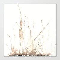 fairies Canvas Prints featuring Fairies by Valentina Cardana
