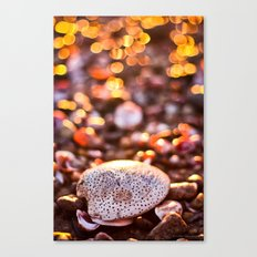 Bokeh Sprinkles Canvas Print