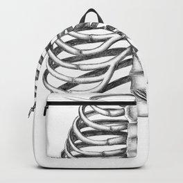 Direct evidence Backpack