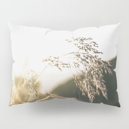 Field of Gold  Pillow Sham
