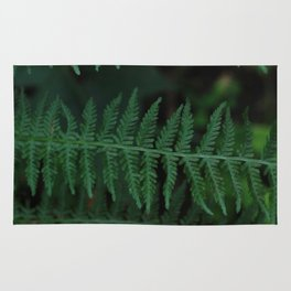 Green leaves of Christmas tree Rug