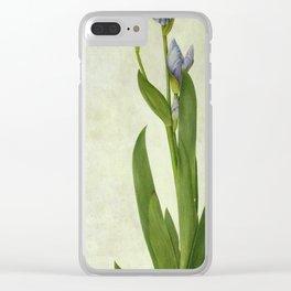 Albrecht Durer - An Iris Clear iPhone Case