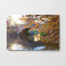 Central Park Morning Metal Print