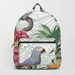 Birds on the Map Backpack
