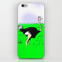 ostrich iPhone & iPod Skins featuring Ostrich by wingnang