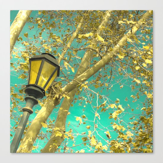 Autumn Gold Leafs in Turquoise Sky  Canvas Print