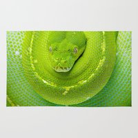 monty python Area & Throw Rugs featuring Green Tree Python (Morelia viridis) by Shannon Wild