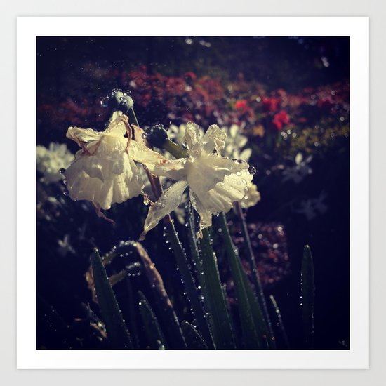 Water Droplets in Motion (Flowers) Art Print